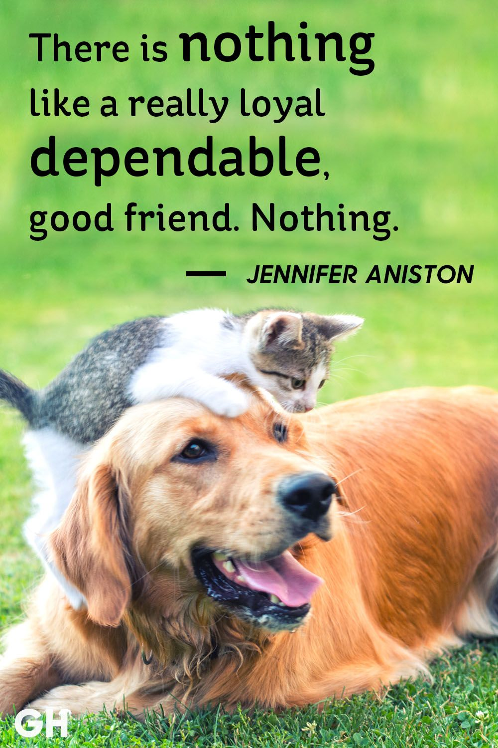 20 Short Friendship Quotes To Share With Your Best Friend   Cute Sayings  About Friends