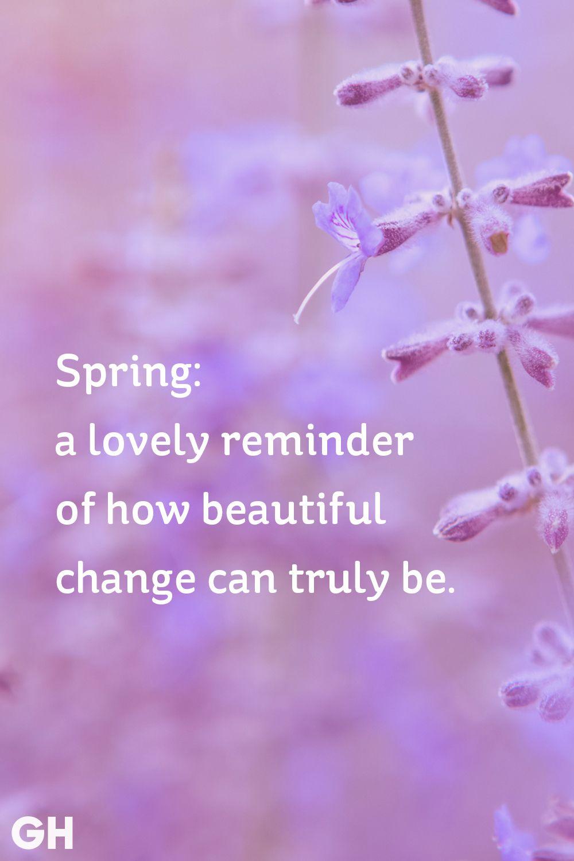 spring saying