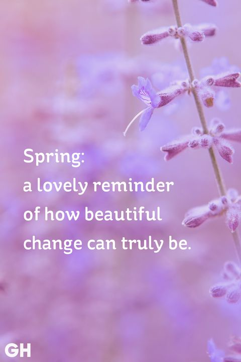 20 happy spring quotes sayings about spring and flowers spring saying mightylinksfo