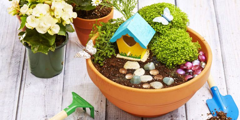 Ordinaire Fairy Garden Ideas