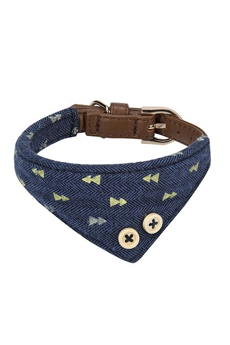 Collar, Dog collar, Fashion accessory, Belt, Pattern, Design, Strap, Leather, Bracelet, Buckle,