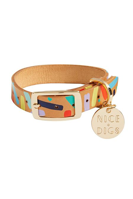 20 Cool Dog Collars Best Useful And Stylish Dog Collars