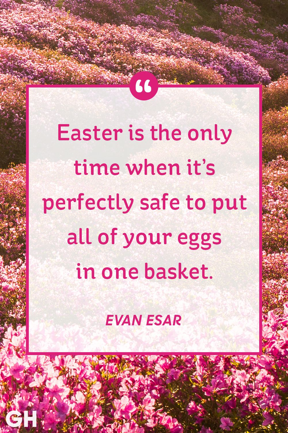 30 best easter quotes famous sayings about hope and spring negle Images