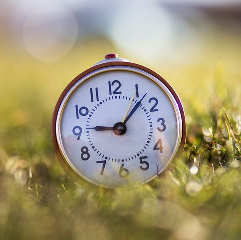 Clock, Nature, Macro photography, Close-up, Morning, Grass, Photography, Spring, Sky, Home accessories,