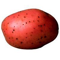 chili-potato-packet-981