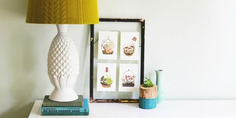 Lampshade, Flowerpot, Lamp, Teal, Lighting accessory, Turquoise, Home accessories, Still life photography, Interior design, Houseplant,