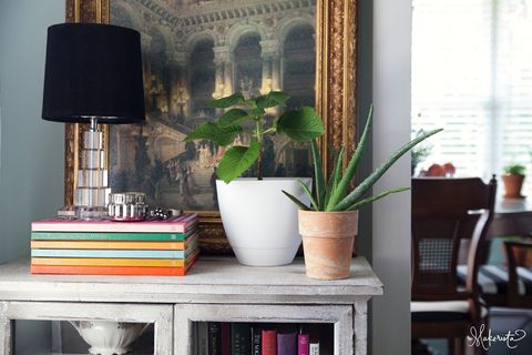 Flowerpot, Room, Interior design, Interior design, Shelving, Houseplant, Publication, Window covering, Lamp, Vase,