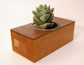 Recycled Wood Desk Planter