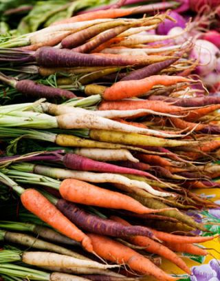 carrots bright colored foods