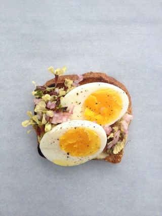 """Egg-Salad"" Crostini"