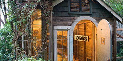 Wood, Leaf, Door, Fixture, Shrub, Hardwood, Groundcover, Twig, Wood stain, Garden buildings,