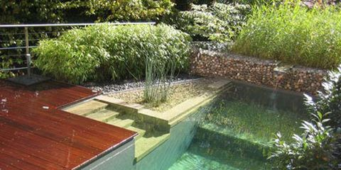 natural looking in ground pools. Natural Looking In Ground Pools E