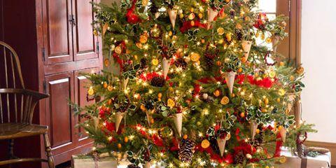 natural christmas decor christmas crafts to make wwwgolfhrinfo