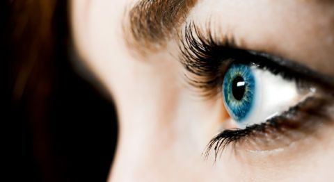 b01ee333244 Eyelash Facts - Weird Facts and History About Eyelashes