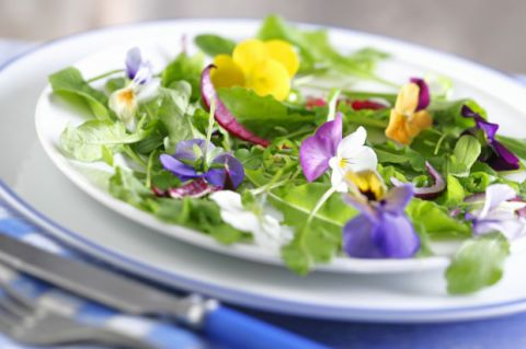 Where To Buy Edible Flowers - Recipes with Edible Flowers
