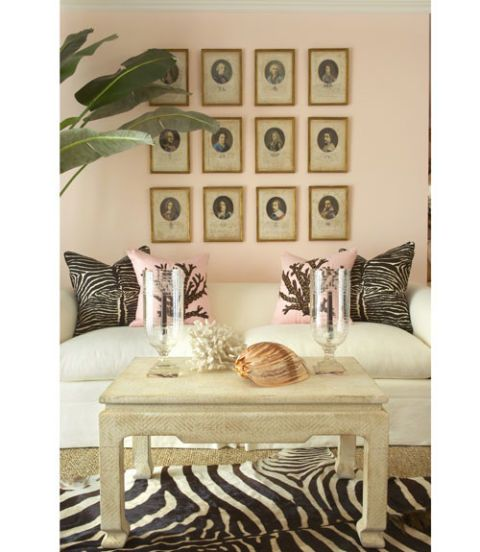 room with zebra print pillows and rug