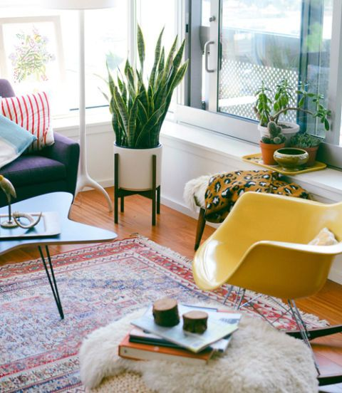 How to decorate with houseplants best houseplant decor - Living room plant ideas ...