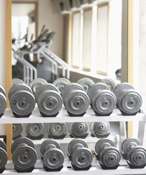 barbells at the gym