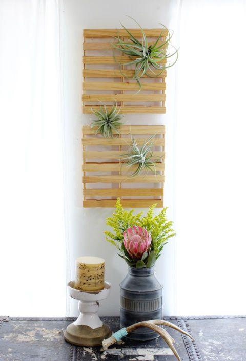Interior design, Flowerpot, Fixture, Interior design, Peach, Vase, Still life photography, Flower Arranging, Artifact, Plant stem,