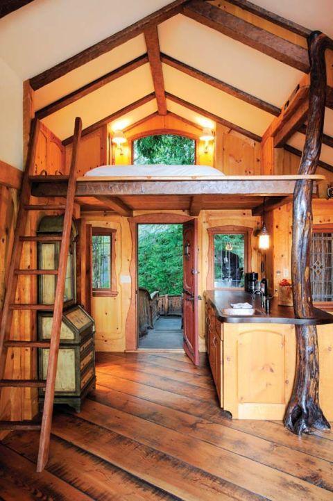 Wood, Lighting, Hardwood, Room, Interior design, Wood stain, Floor, Ceiling, Wood flooring, Flooring,