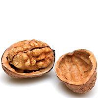 walnut-gingerbread-1191