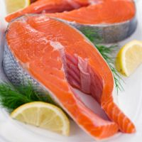 warm-salmon-salad-1853