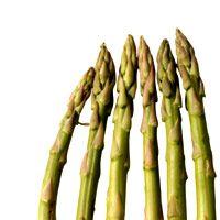 spring-soup-noodles-ham-asparagus-1947