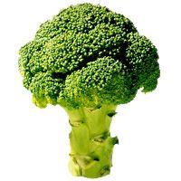 stir-fried-broccoli-with-pasta-2372