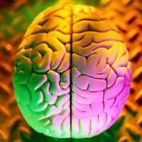 Memory and Brain Power Game Reviews - Improve and Boost Your