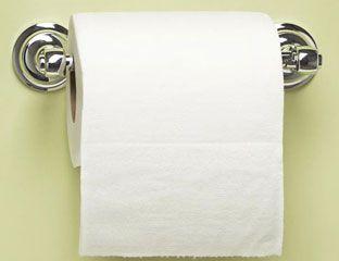 Best Toilet Paper - Toilet Paper Reviews