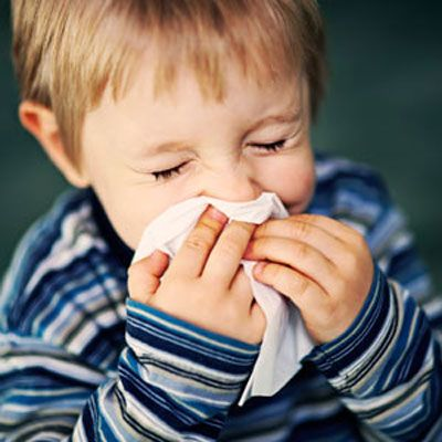 Keep Germs From Spreading - Stop Cold Germs