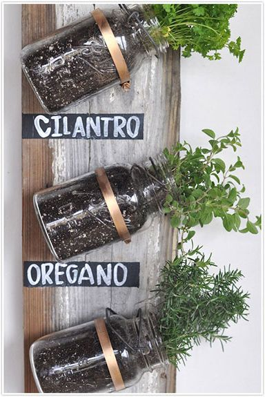 Mason Jar Craft - Herb Holder