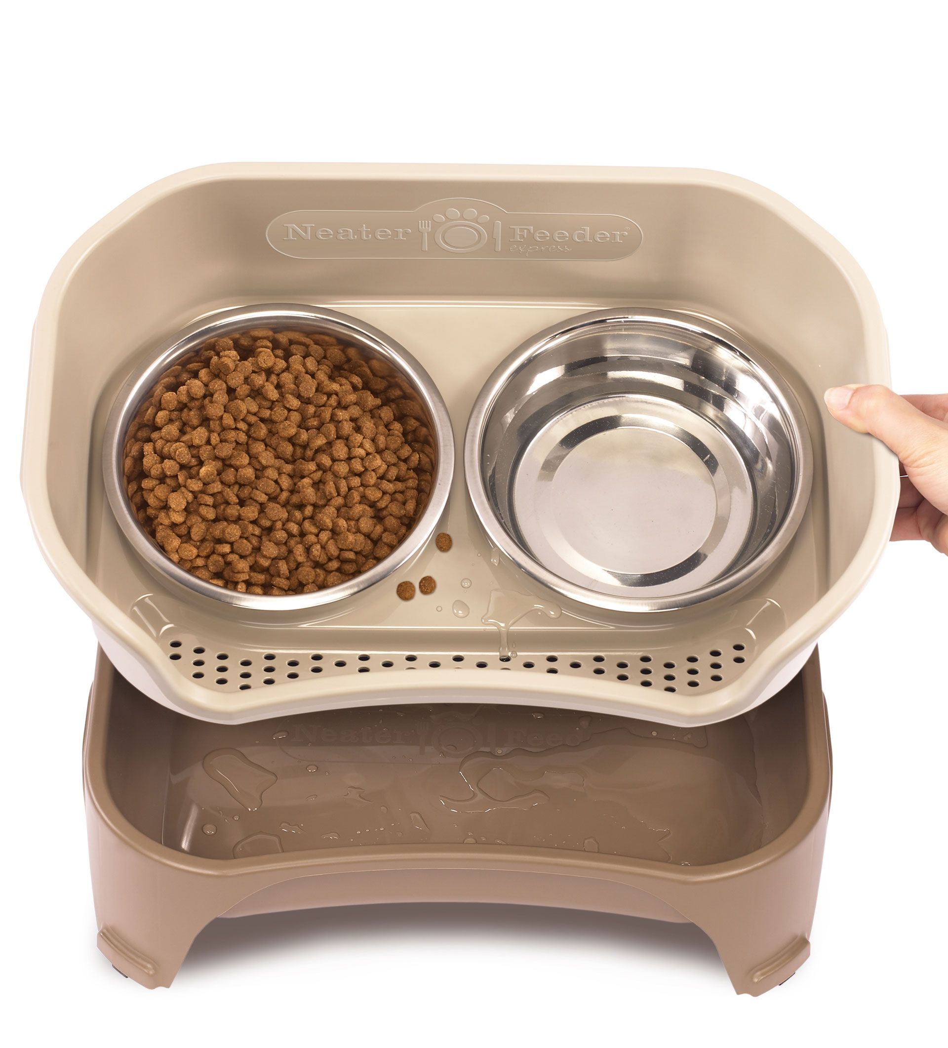reviewed finds automatic entertaining dogs best and feeder feeders pet cats for