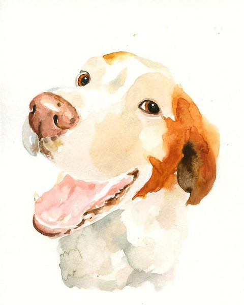 Carnivore, Art, Dog breed, Snout, Terrestrial animal, Paint, Companion dog, Dog, Working animal, Painting,