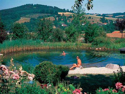 Natural Pools Natural Swimming Pools And Ponds