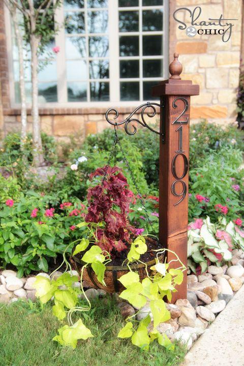 Plant, Flower, Garden, Petal, Shrub, Iron, Groundcover, Annual plant, Yard, Backyard,