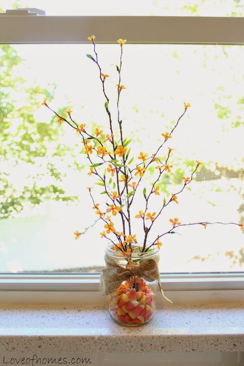 Branch, Yellow, Twig, Amber, Fixture, Interior design, Creative arts, Plant stem, Vase, Still life photography,
