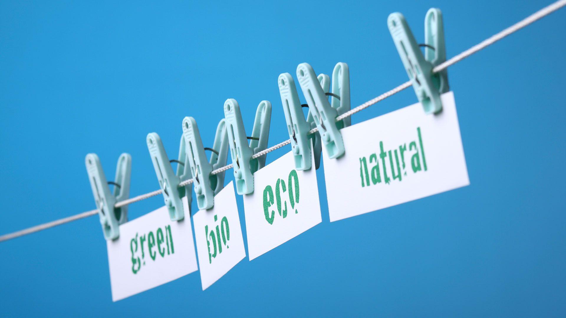 Ecofriendly Labels Defined - Understanding Green Buzzwords
