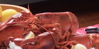 Invertebrate, Food, Serveware, Arthropod, Ingredient, Dishware, Cuisine, Dish, Tableware, Seafood,