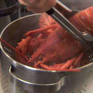 How Long to Cook Lobster - How Long to Boil Lobster