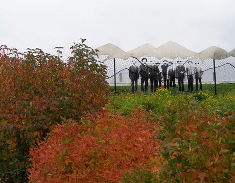 greeley colorado xeriscape garden