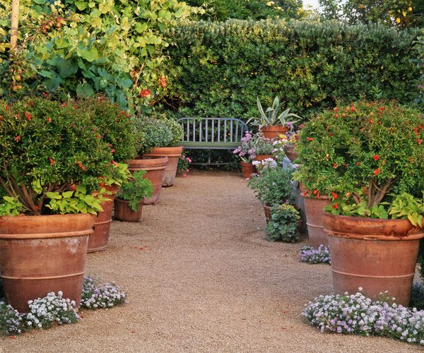 Potted Garden Plants 16 container gardening ideas potted plant ideas we love workwithnaturefo