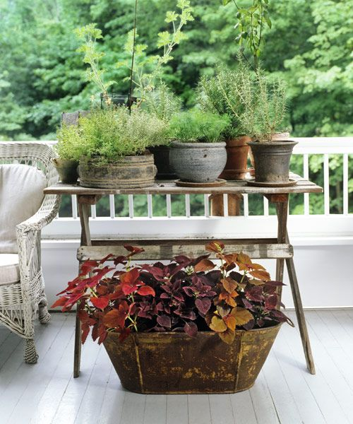 16 Container Gardening Ideas - Potted Plant Ideas We Love