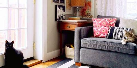 Room, Interior design, Floor, Flooring, Home, Living room, Couch, Interior design, Orange, Fixture,