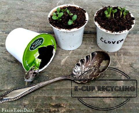 Green, Leaf, Kitchen utensil, Font, Soil, World, Cutlery, Flowerpot, Compost, Cup,
