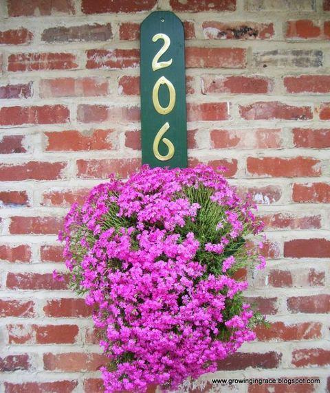 Brick, Flower, Brickwork, Purple, Wall, Pink, Magenta, Petal, Shrub, Violet,
