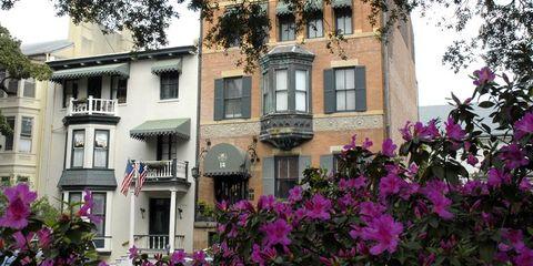 Petal, Flower, Magenta, Pink, Building, Facade, Purple, Real estate, Apartment, Shrub,