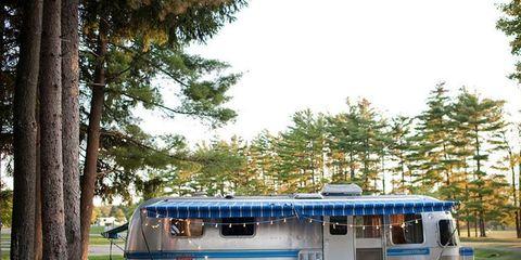 Tree, Shade, RV, Travel trailer, Park, Caravan, Yard,