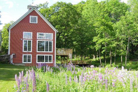 Plant, Window, House, Land lot, Lavender, Purple, Garden, Shrub, Groundcover, Rural area,