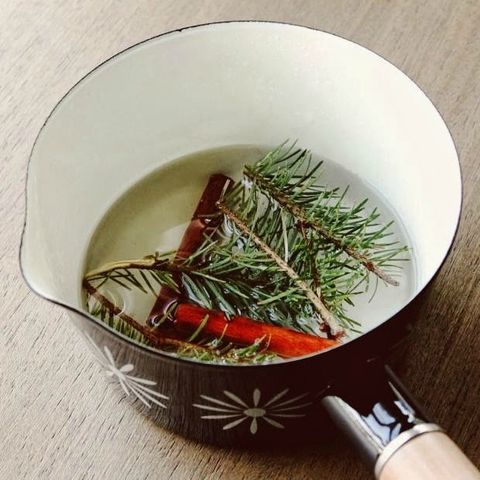 image - Best Smelling Christmas Tree